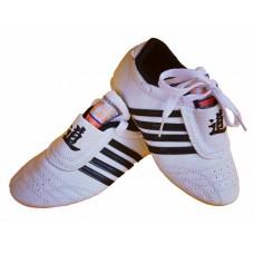 TKD Martial Art Shoes Taekwondo